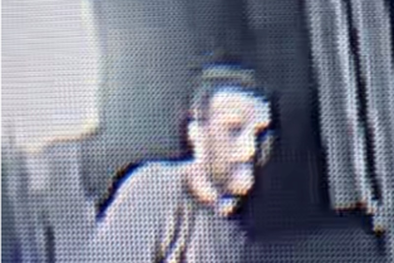 Catalytic converter theft suspect
