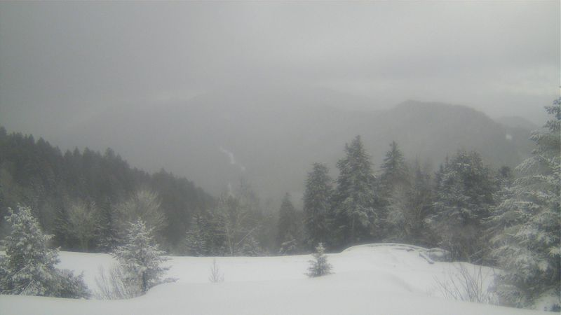 """National Park Service reports 13.33"""" of snow on the ground at Newfound Gap inside Great Smoky..."""