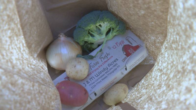 A produce bag with onion, potatoes, broccoli, and eggs