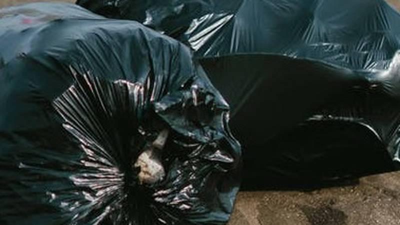 Oak Ridge household trash pickup to begin mid-October (Source: Pexels)