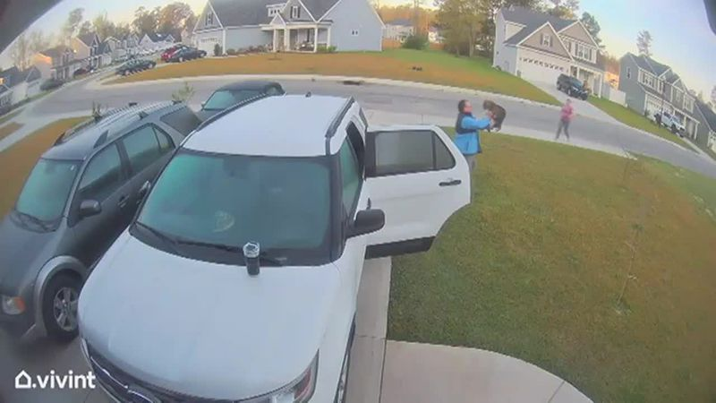 N.C. man throws rabid bobcat after it attacks wife in wild video