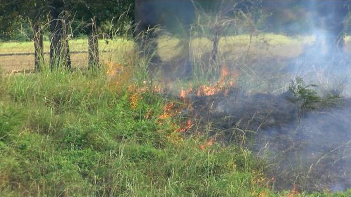 The Knox County Air Quality Management issued a burn ban for Knox County Thursday.
