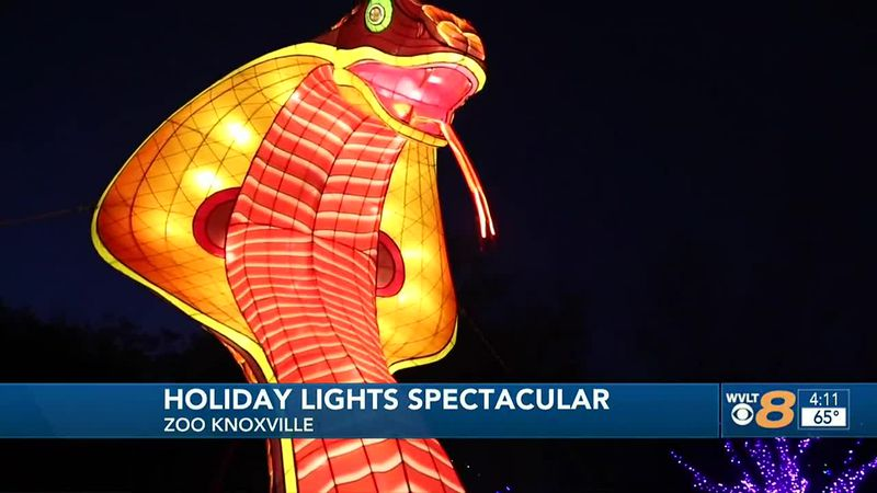 Zoo Knoxville lights