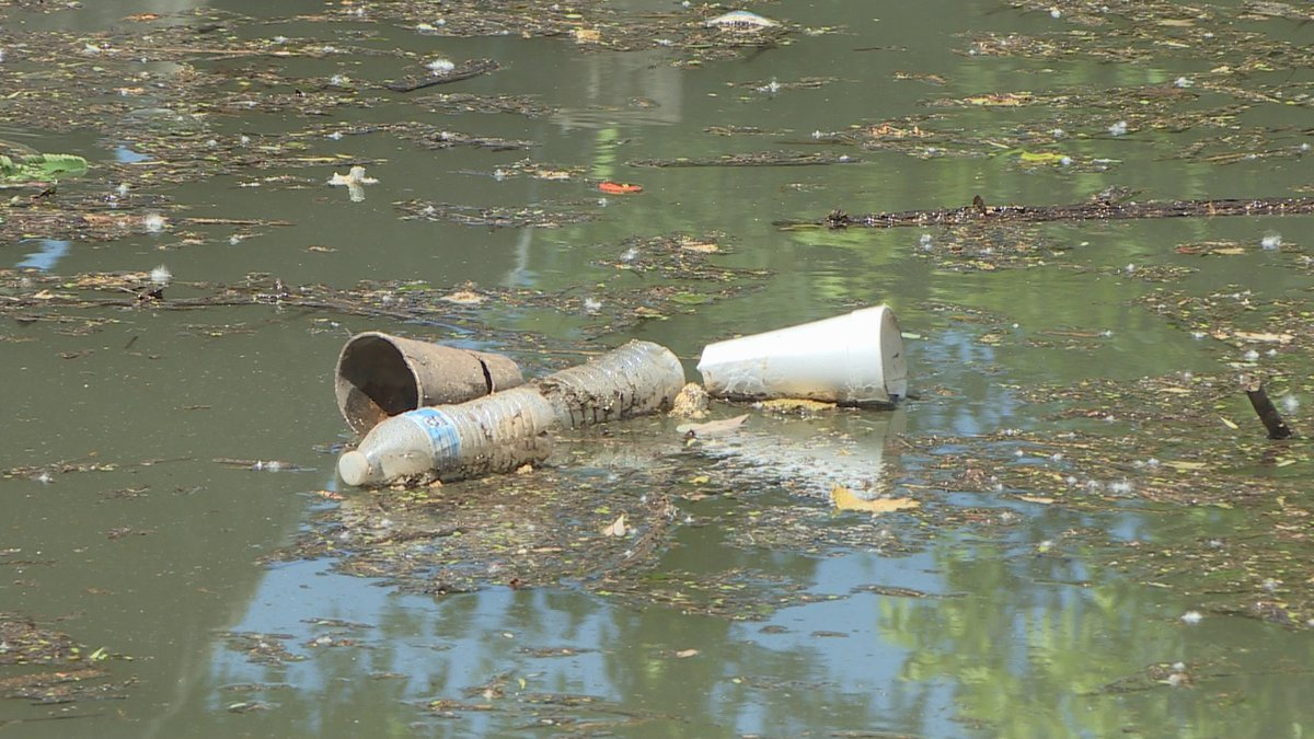 Trash floating in the Tennessee River