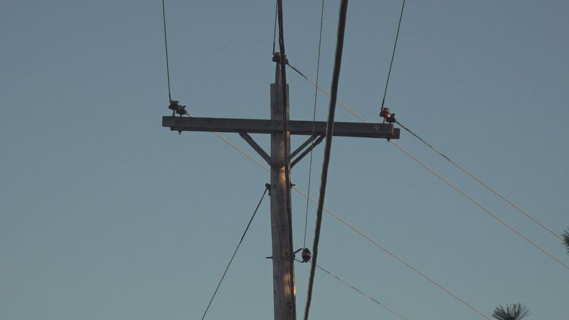 The Sevier County Electric System did not give an estimated time for power to be restored.