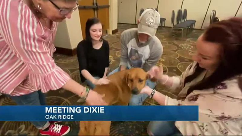 Dixie meets her supporters