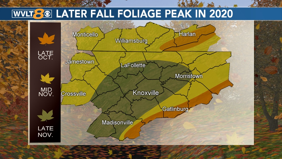 The colors of the leaves are likely to change later this year, due to the above average temperature trend.