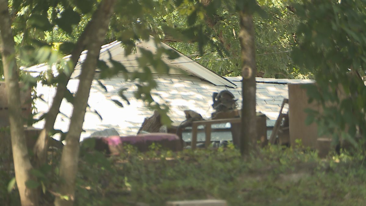 A teenager was injured in a dog attack in South Knox County / Source: WVLT News