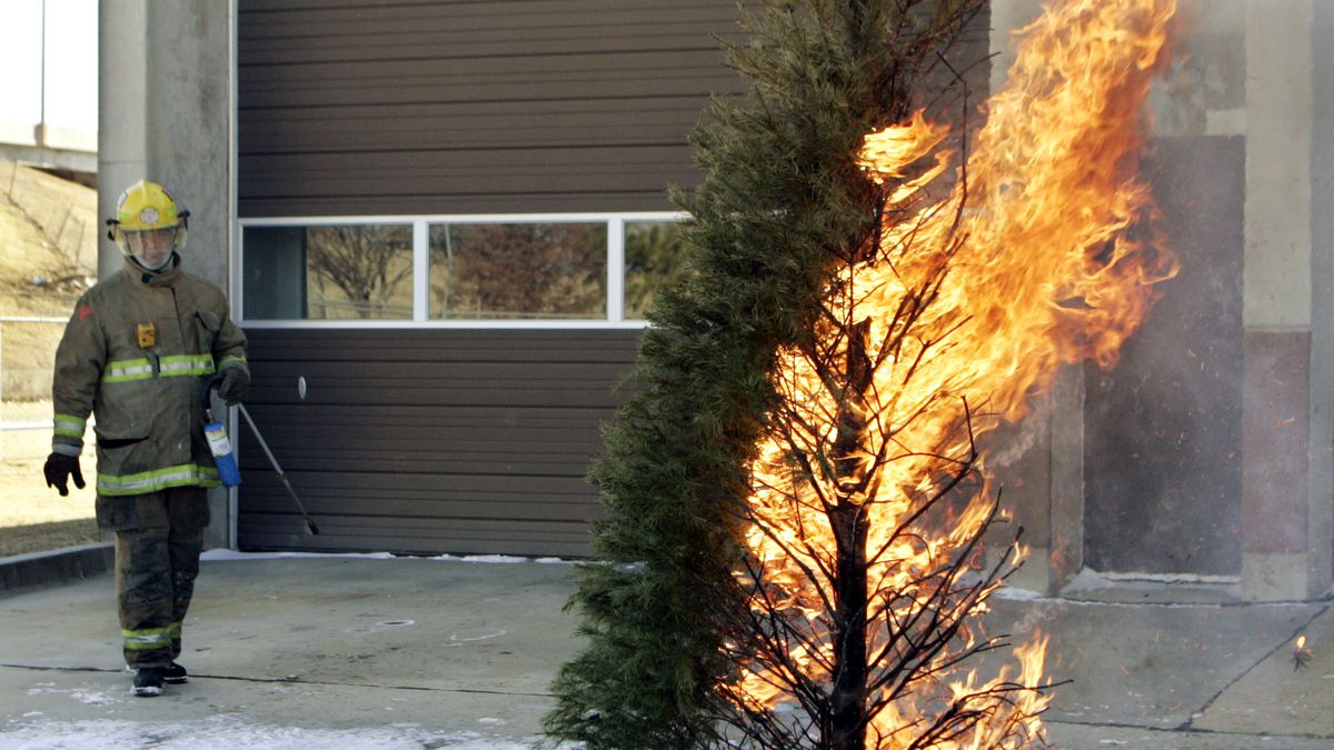 An Oklahoma City firefighter, left, watches as the pine tree he ignited burns, during a demonstration for the media of how quickly a Christmas tree can catch fire, in Oklahoma City, Friday, Dec. 9, 2005. (AP Photo)