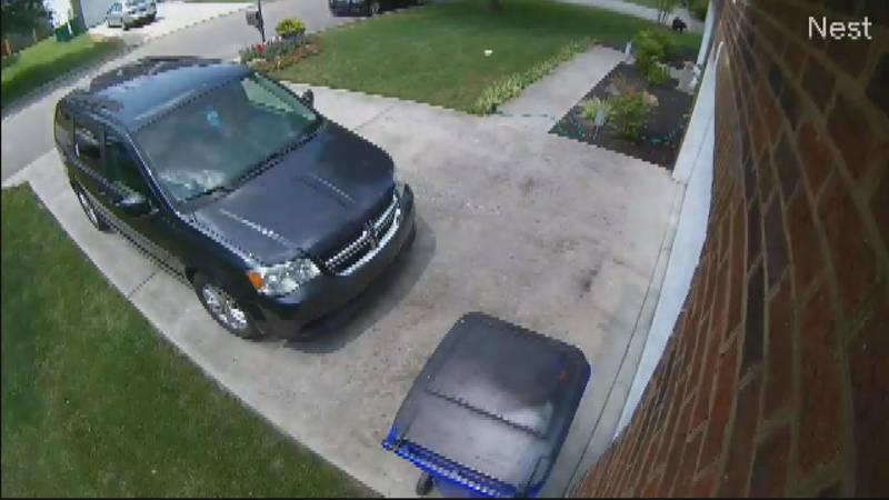 Bear caught on camera in North Knox County neighborhood
