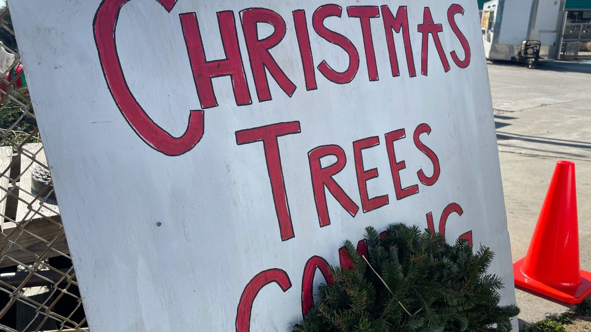 Raise the tree and Central Filling Station team up to give back to the community.