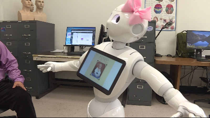 Dolly the robot
