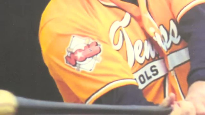 Former Tennessee assistant baseball coach