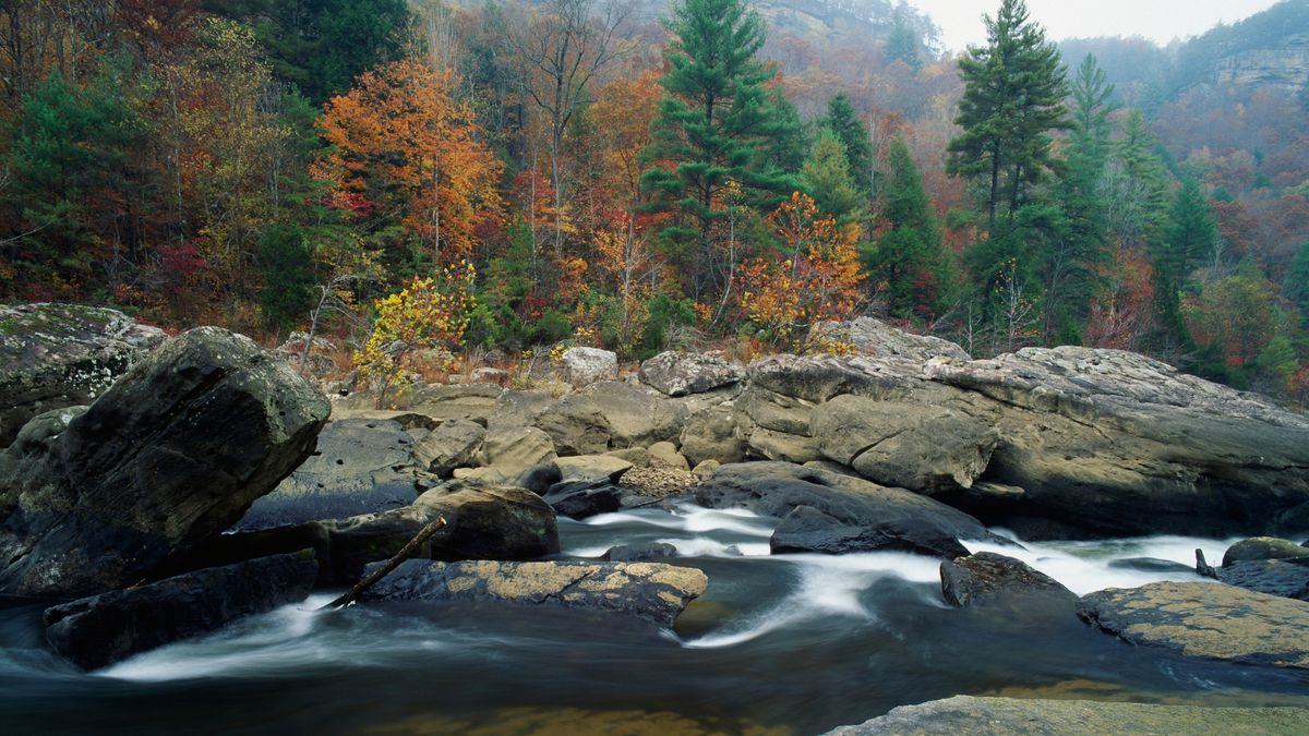 File photo: Crews search for missing child in Big South Fork National Park (Canva)
