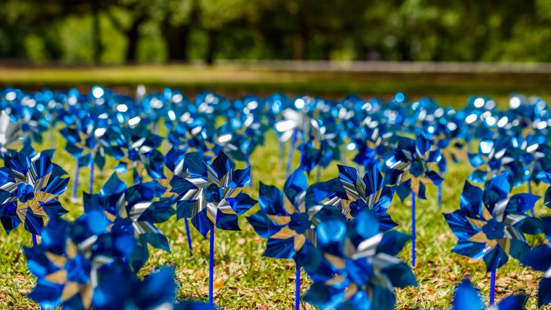 Pinwheels commemorating Child Abuse Prevention Month.