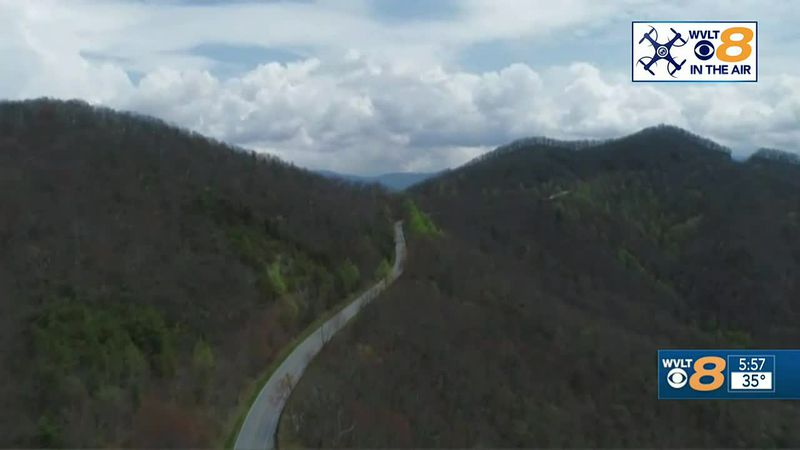 Forestry in the Smoky Mountains